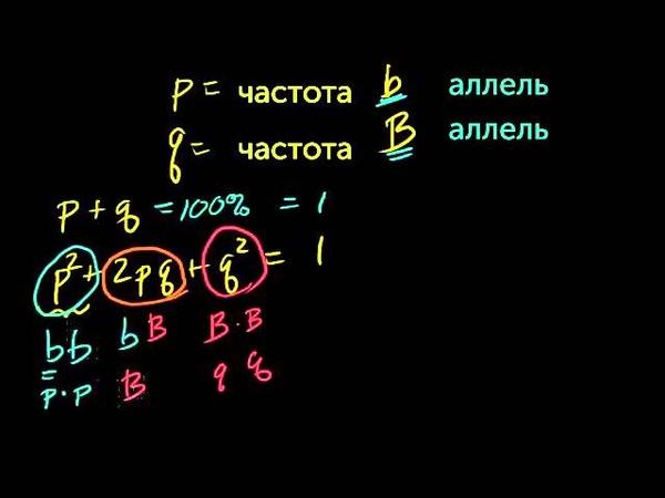 Принцип Харди-Уайнберга ghbywbg [fhlb-efqy,thuf