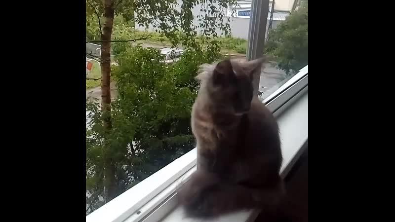 Aria Sofia Onego на балконе