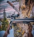 Изменения в закон Об оружии амнистия для охотников нарушивших правила ведения охотничьего хозяйства и охоты и возможность быстро стать владельцем нарезного огнестрельного оружия