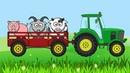 Синий Трактор едет на Ферму Трактор Гоша и Домашние животные