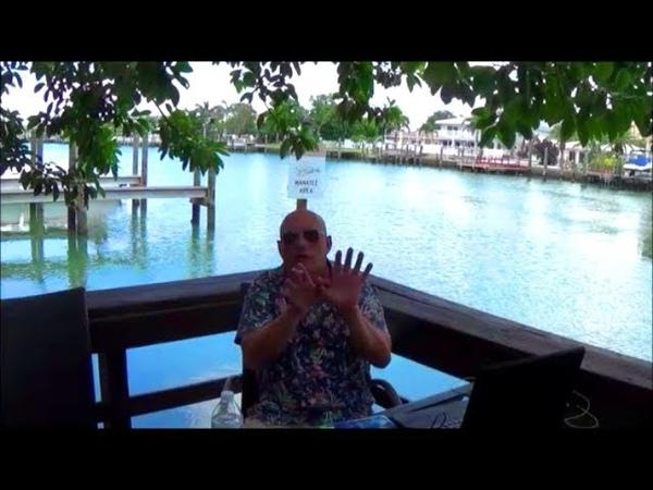 Белые врут в пользу чёрных Толерантность Жизнь в Майами Майамские истории