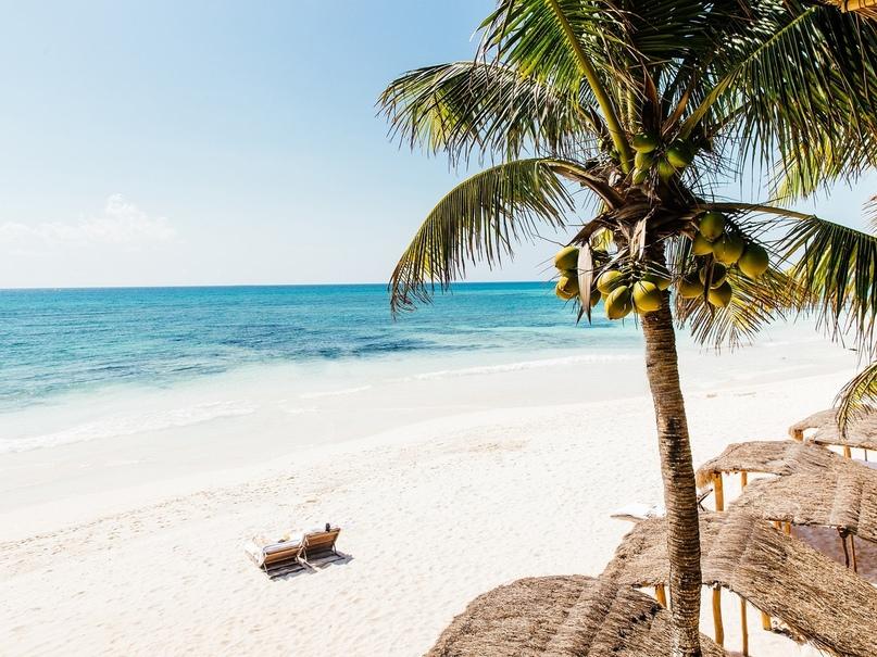 Топ-10 зимних направлений для пляжного отдыха, изображение №4