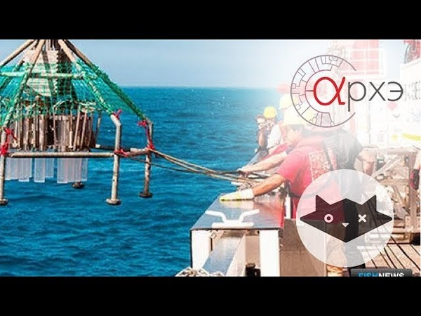 Александра Петрунина: 40 дней в Тихом океане