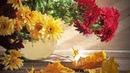 романс Отцвели уж давно хризантемы в саду исп. В.Пономарева