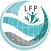 Центр LFP — иностранные языки | БелГУ | Белгород