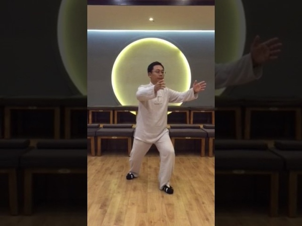 1 shi - peng shi в исполнении Мастера Ван Лина
