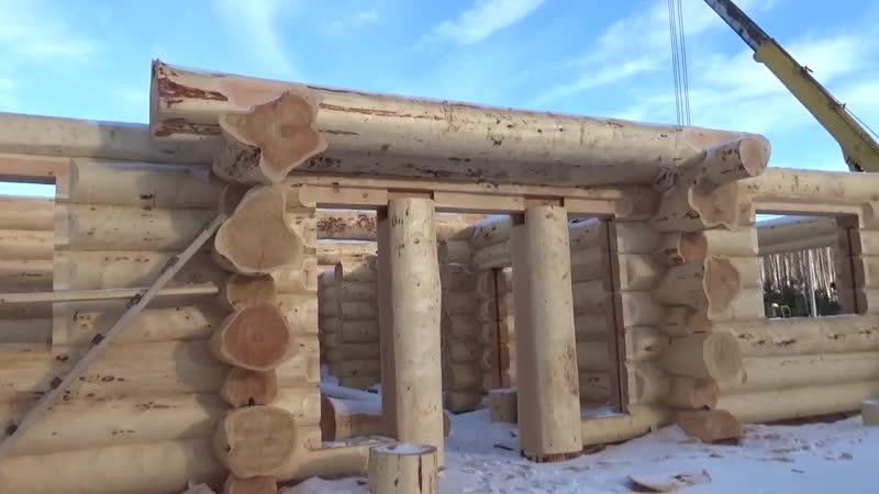"""Сруб дома из кедра. Канадская дикая рубка . Проект """" Ясный сокол """"."""