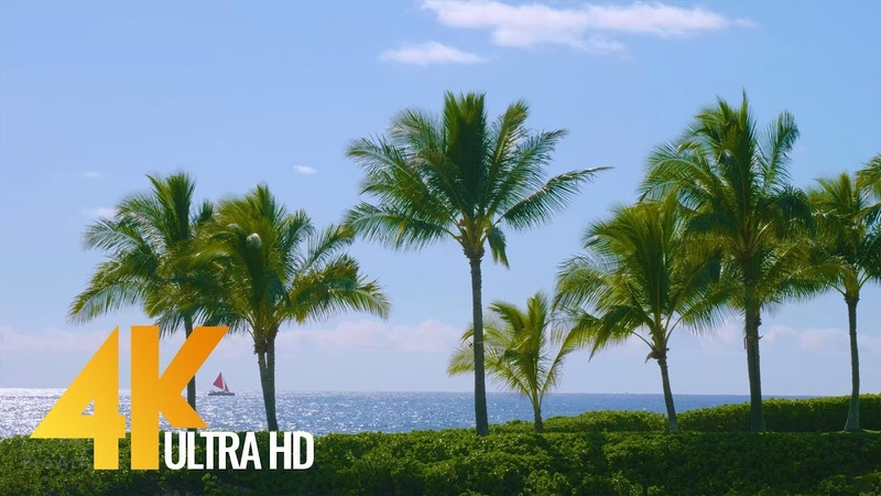 Best Beaches of Oahu Hawaii in 4K Long Relax Video with Nature Sound 6 Hour