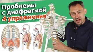 Как работает диафрагма? / Полезные упражнения для диафрагмы на каждый день