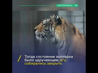 Липецкому зоопарку нужна помощь