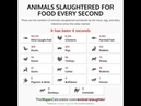 Animals slaughtered for food every second. GoVegan