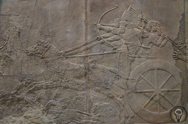 Самая древняя колесница с Урала