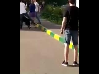 В Москве пьяный дебошир ножом ранил собаку на поводке