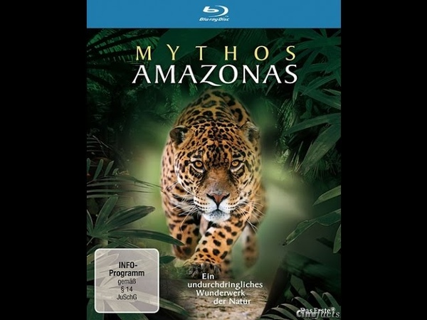 Мифы Амазонки Триумф жизни