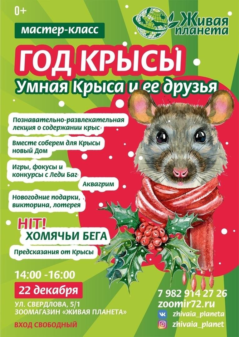 Топ мероприятий на 20 — 22 декабря, изображение №43