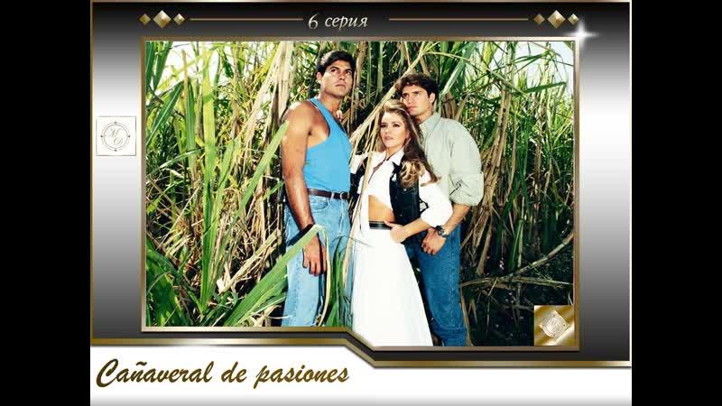 В плену страсти 6 серия \Cañaveral de pasiones - Capítulo 6[575, Mp4]
