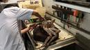 THE BIGGEST ALASKAN KING CRAB ever cooked in Vietnam - Seafood street food in Vietnam