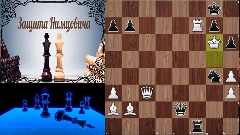 Шашин Корчной Король атакует