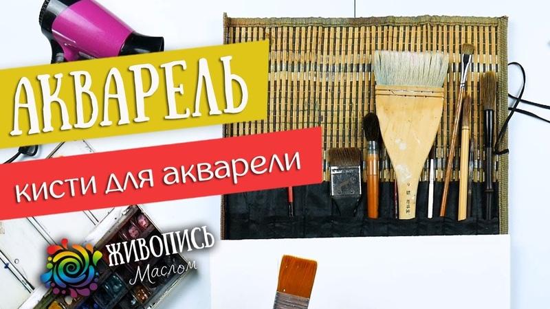 Акварель для новичков - Кисти для акварели. Художник Елена Зыкова