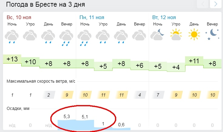 Сегодня ночью и завтра по Брестской области прогнозируются дожди, местами сильные