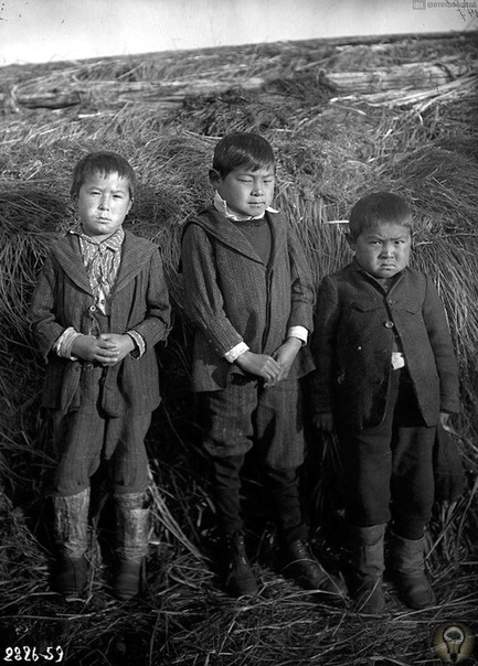 Алеутские острова (Аляска) 1909 - 1910 гг. Этнокультурные контакты русских с алеутами в XVIII-XIX вв Ч.-2 Первые плавания промышленников на Алеутские острова интересны для нас тем, что именно