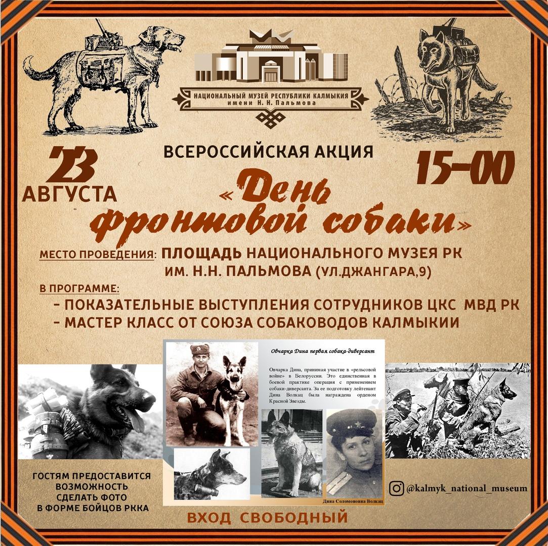В Национальном музе пройдет Всероссийская акция «День фронтовой собаки»