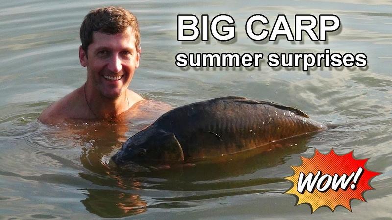 Summer surprises of BIG carps / Летние причуды БОЛЬШИХ карпов