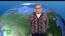 Пьяный прогноз погоды на НТВ 14 02 2019 от Александра Беляева
