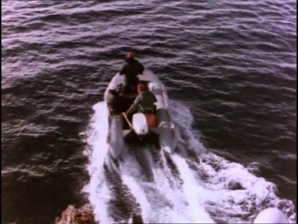 09 1969 Киты пустыни Подводная одиссея команды Кусто