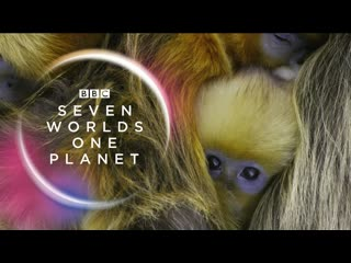 Премьера. sia feat. hans zimmer - out there (seven worlds, one planet  extended trailer)