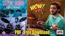STEVE GADD - UP CLOSE (PFD Free Download) - Drum Solo - Drum Lesson - Drum Techiniques - Paradiddles