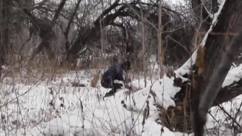 Сотрудники отряда специального назначения ГРОМ в засаде при задержании наркоторговца