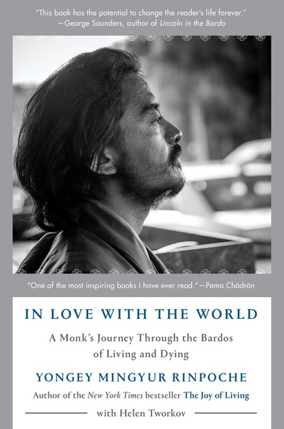 In Love with the World by Yongey Mingyur Rinpoche