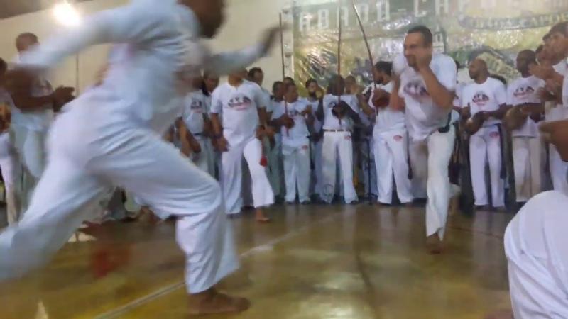Troca de Cordas Abadá-Capoeira - Verde e Verde/Roxa 2019