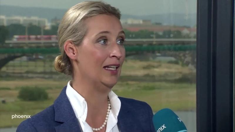 Alice Weidel AfD zerstört Phoenix TV Moderator Alfred Schier Landtagswahlen Sachsen Brandenburg 2019