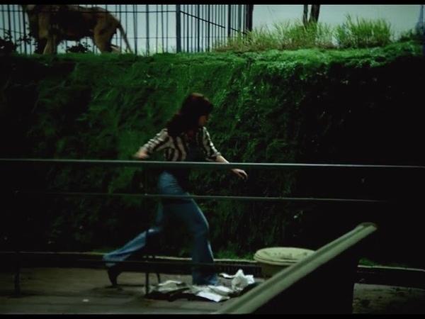Невероятные приключения итальянцев в России 1973 Лев в клетке 2