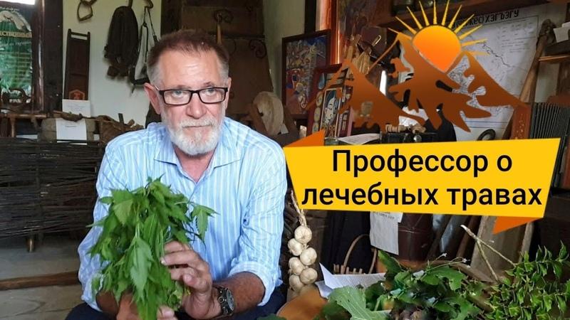 Знахарь Александр Ручкин доктор медицинских наук профессор о лечении травами
