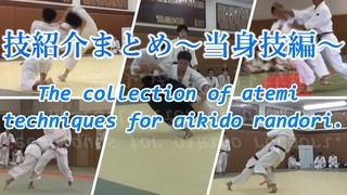 競技合気道 当身技紹介まとめ/The collection of atemi techniques for aikido competition