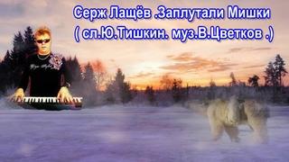 Серж Лащёв  Заплутали Мишки  сл Ю Тишкин  муз В Цветков