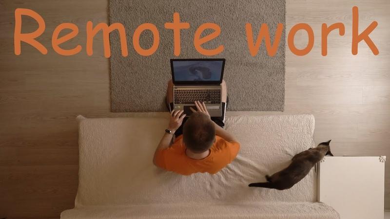 Remote work. Programmer's working day / Удаленная работа. Будни программиста