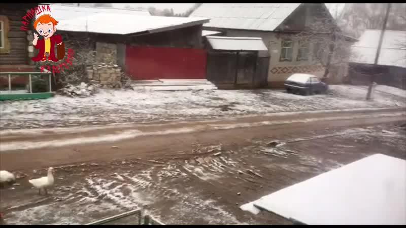 А снег кружил и падал