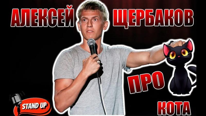 Стендап Алексей Щербаков про Черного кота Нарезка live 2020 Stand Up Лучшее
