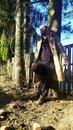 Личный фотоальбом Кости Ихтиота