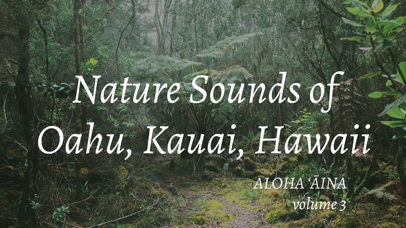 Nature Sounds of Oahu Kauai Hawaii Aloha 'Āina Volume 3