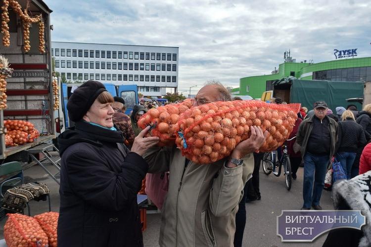 Смотрите, как сегодня на ярмарке в Бресте торговали и праздновали