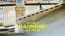 Thrasher Magazine Ace Pelka's Welcome to Madness