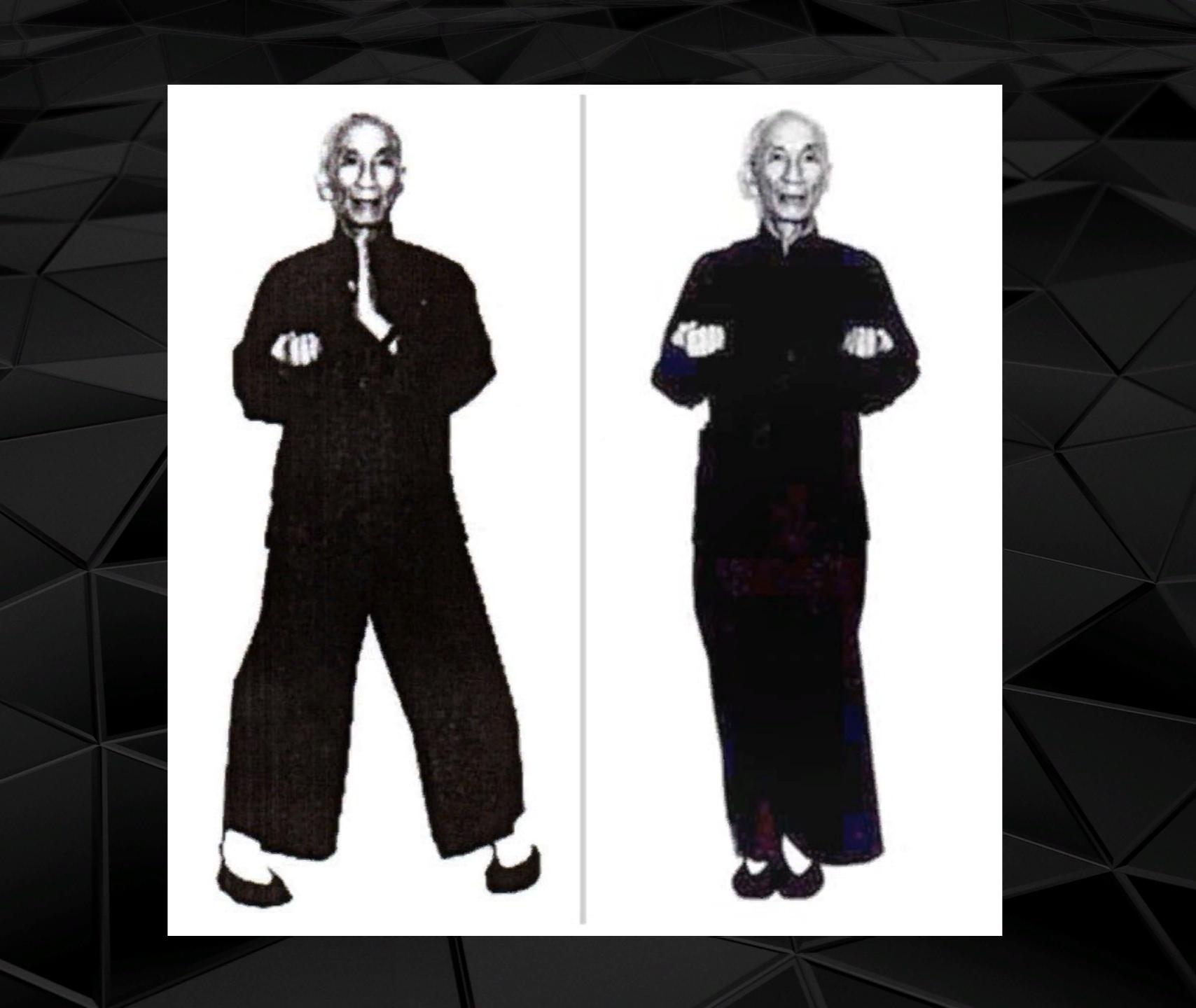 Сиу лим тао форма Вин Чун