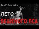 ЛЕТО БЕШЕНОГО ПСА аудиокнига ДЖО Р. ЛАНСДЭЙЛ фантастика приключения триллер