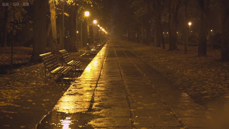 Quiet Night in the Park with Relaxing Sounds of Rain Falling Down the Empty Alleys Puddles Leaves