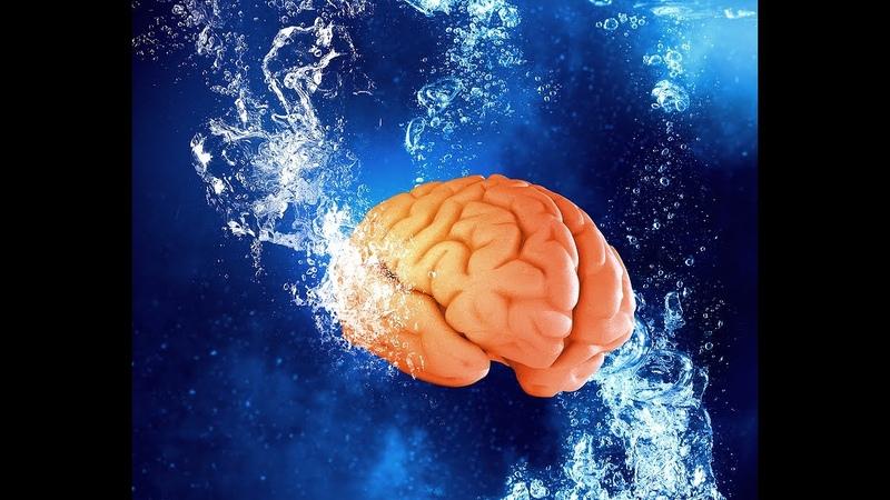 ✅ Τι προκαλεί η αφυδάτωση στον εγκέφαλο βίντεο